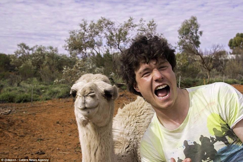 Hayvanlarla Selfie Keyfi ? Selfie Nedir