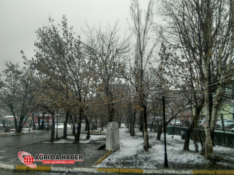 Ağrı'da Karla karışık Yağmur etkili oluyor