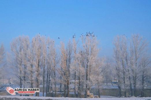 Ağrıda kış Manzaraları - Doğa Resimleri
