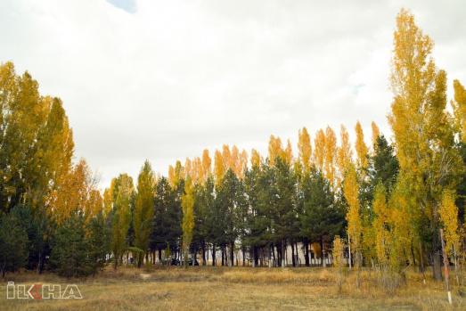 Ağrı Sonbahar Resimleri