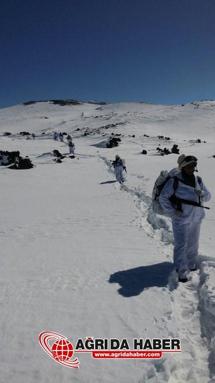 Tendürek'te operasyon 15 Mağara İmha Edildi