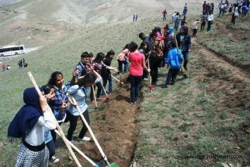 Liseli Evren'in Projesiyle Doğubayazıt'ta 1 Milyon Fidan Toprakla Buluşacak