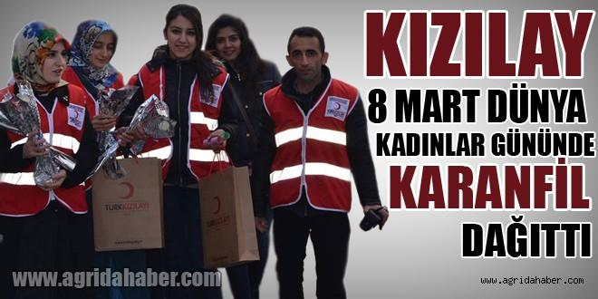 Kızılay 8 Mart Dünya Kadınlar Gününde Karanfil Dağıttı