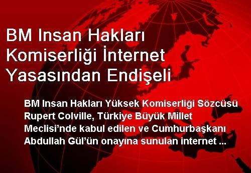 BM Insan Hakları Komiserliği İnternet Yasasından Endişeli