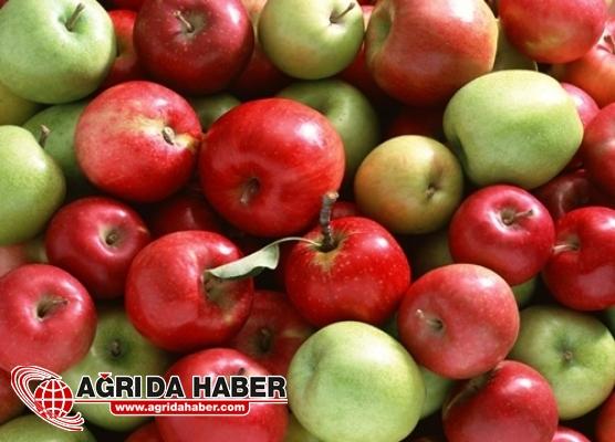 Günde 1 Elma Tüketimi Tam Bir  Kanser Önleyici!