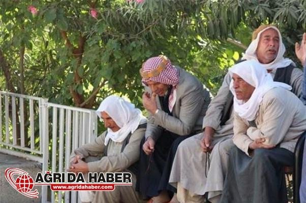 Şanlıurfa'da Pamuk Tarlasında 3 Çocuk Ölü Bulundu