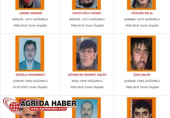 PKK Muş-Kars Bölge Sorumlusu Öldürüldü!