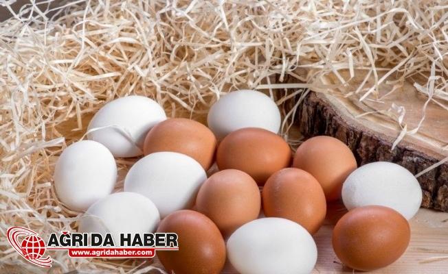 Yumurtanın İyisi Nasıl Anlaşılır? Yumurta Kalitesine Göre Kodlandı!