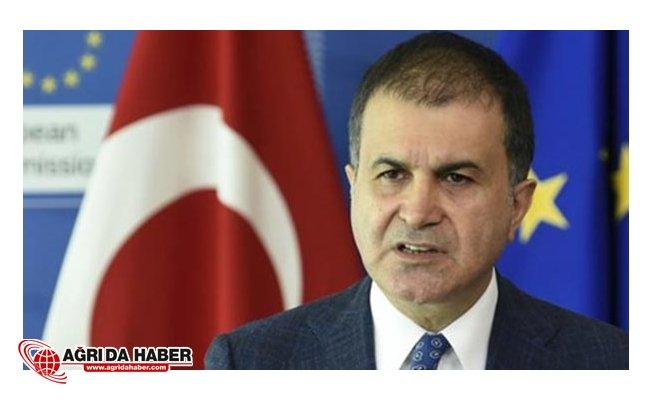 AB Bakanı Ömer Çelik: 'Zeytin Dalı Harekatı' eleştirilerini sert çıktı
