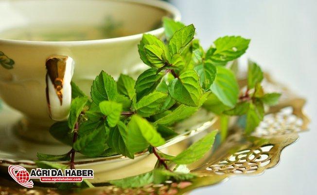 Uzmanlar Uyardı! Bitki Çaylarıda Tehlikeli Olabilir