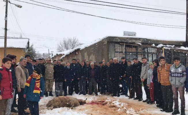 Vatandaşlar Mehmetçik için kurban kesti