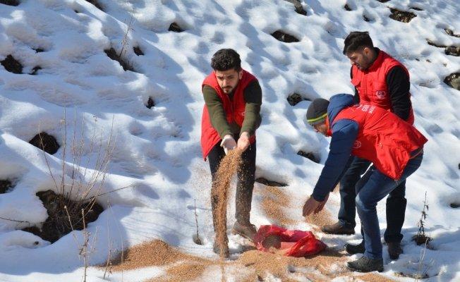 Muş'ta Gençlik Liderleri yaban hayvanları için doğaya yem bıraktı