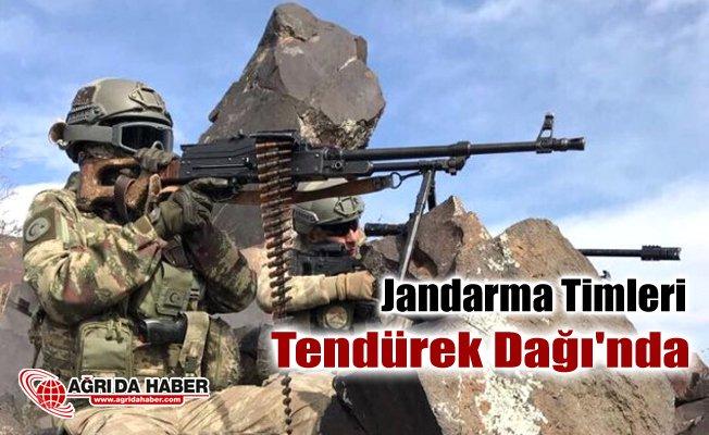Jandarma Komando Timleri Ağrı Tendürek Dağı'nda operasyon başlattı