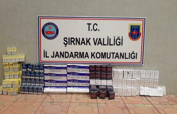 Şırnak'ta 3 bin 350 paket kaçak sigara ele geçirildi