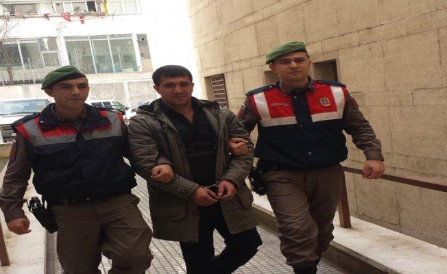 Devriye gezen jandarma PKK üyesini yakaladı