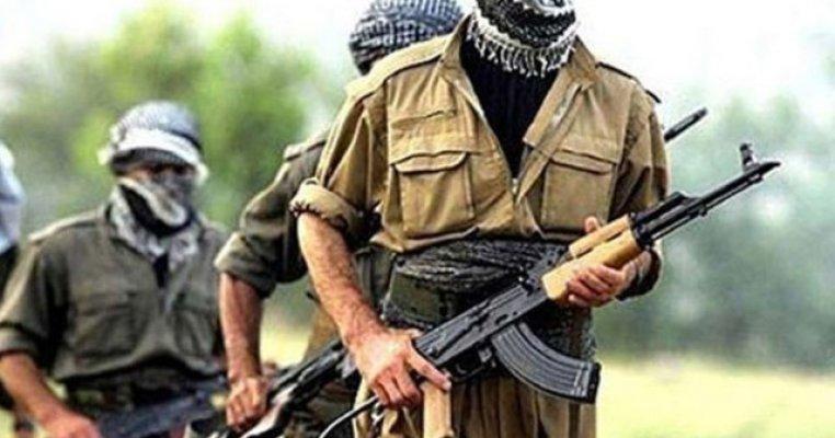 Ağrıda 10 Günde 14 Terörist Etkisiz Hale Getirildi