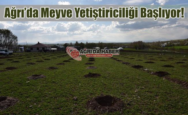Ağrı'da Meyve Yetiştiriciliği ve Geliştirmesi Projesi Hayata Geçti
