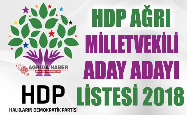 Ağrı HDP Milletvekili Aday Adayları Listesi 2018
