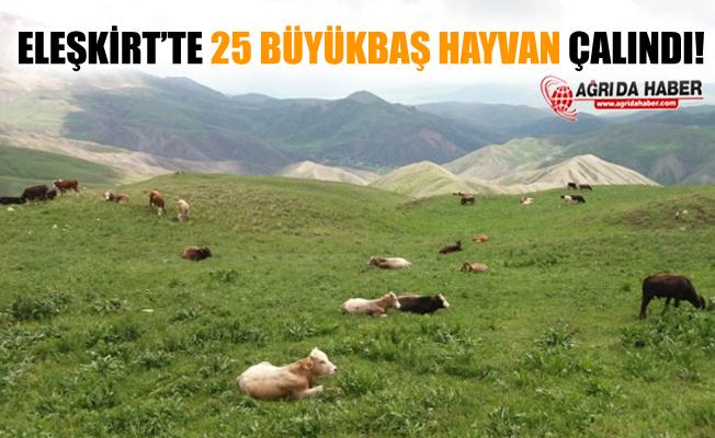Eleşkirt Aydoğdu Köyünde 25 adet Büyükbaş Hayvan Çalındı!
