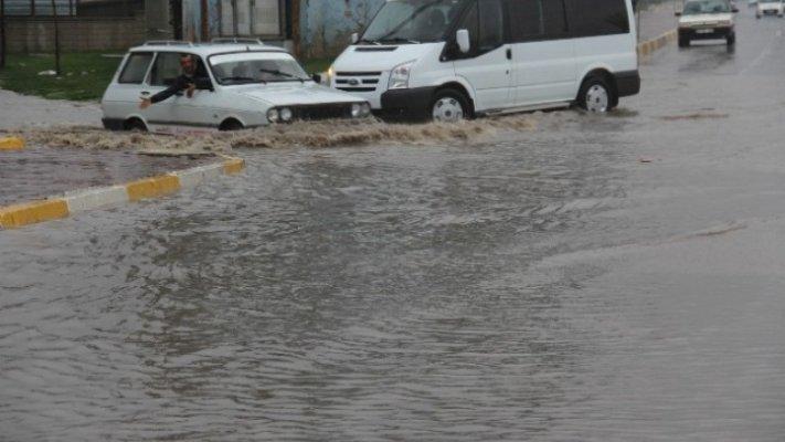 Hindistan'da Yağmur Can Aldı