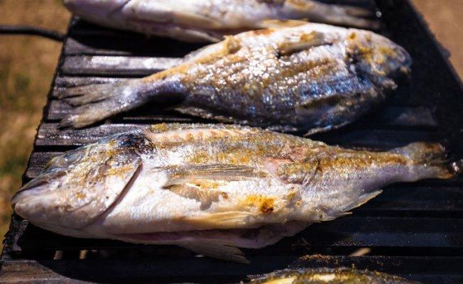 Balığın İnsan Vücuduna Faydaları
