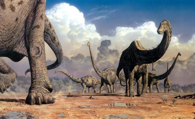Yeni Bir Keşif Dinozor Türü