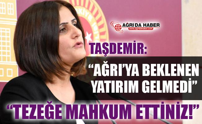 HDP Ağrı Milletvekili Dirayet Taşdemir'den Beklenen Yatırımın Yapılmadığı İddiası
