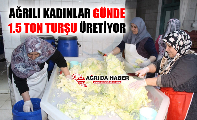 Ağrılı Kadınlardan Günlük 1.5 Ton Turşu Üretimi