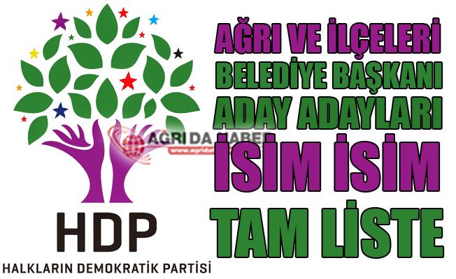 HDP Ağrı ve İlçeleri Belediye Başkan Aday Adayları Tam Liste 2019