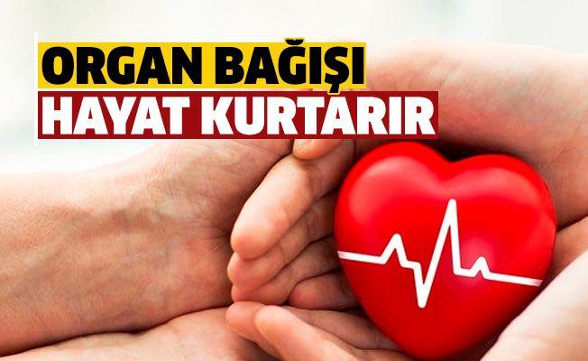 Organ Bağışı Haftasında Bingöl 218 kişi ile Destek oldu