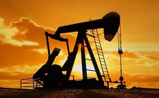 Adana'da Petrol Arayışı Devam Ediyor!