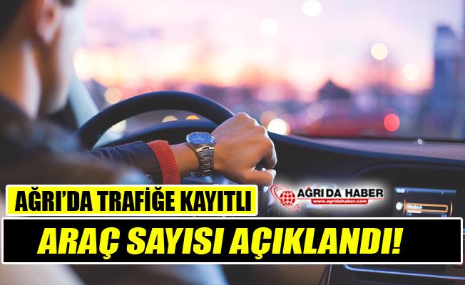 TÜİK Verilerine göre Ağrı'da Trafiğe Kayıtlı Araç Sayısı