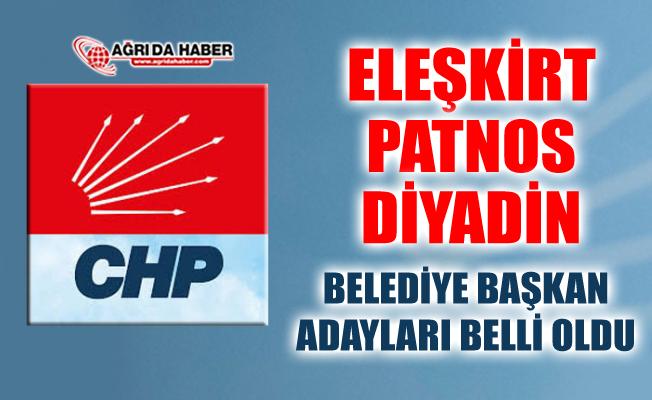 CHP Ağrı İlçeleri Dahil 102 Adayını Açıkladı