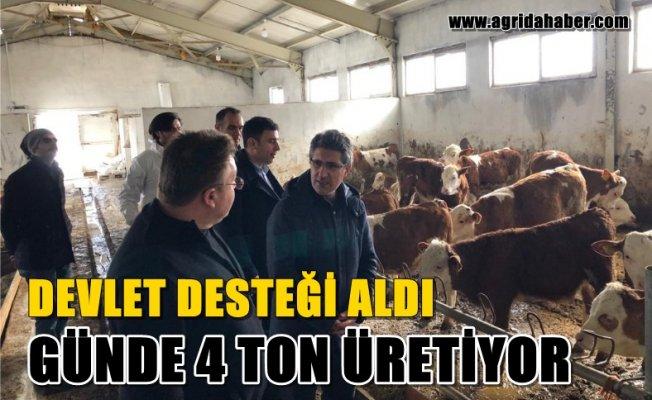 DevletDesteği sayesindeKurulan ÇiftlikteGün içerisinde4 Ton Süt Üretiliyor