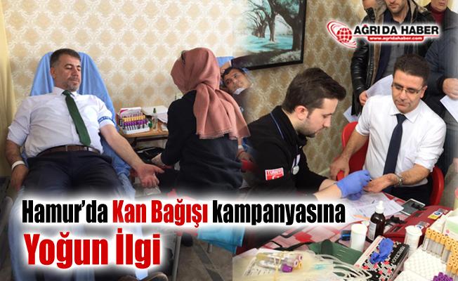Hamurda kan bağışı kampanyasına yoğun ilgi