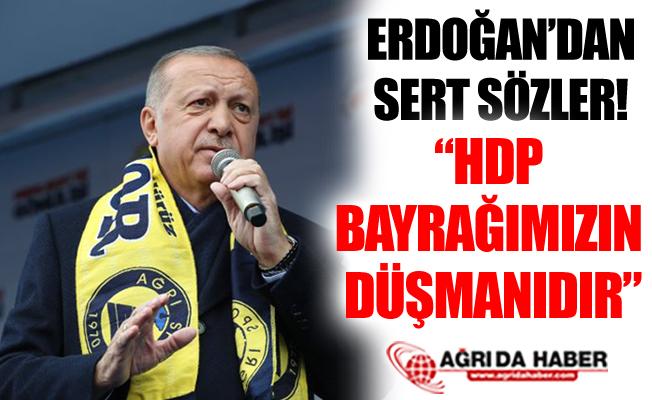 "Cumhurbaşkanı Erdoğan: ""HDP Bayrağımızın ve İstiklal Marşımızın Düşmanıdır"""