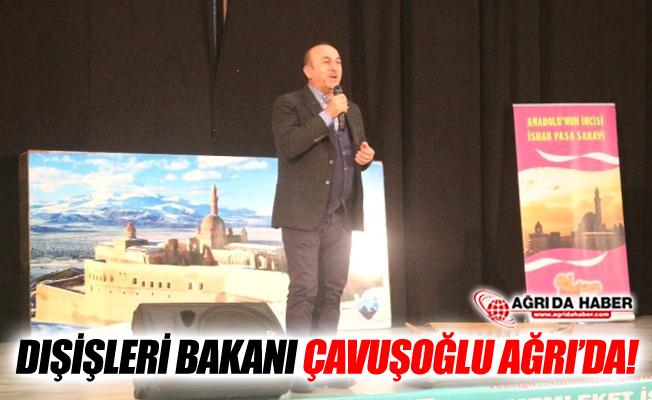 Dışişleri Bakanı Çavuşoğlu Ağrı'da