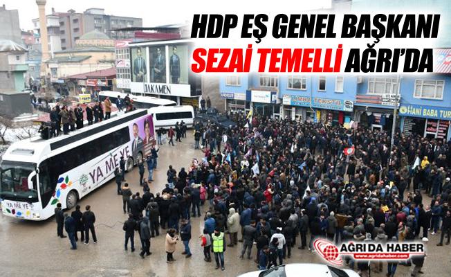 HDP Eş Genel Başkanı Sezai Temelli Ağrı'ya Geldi