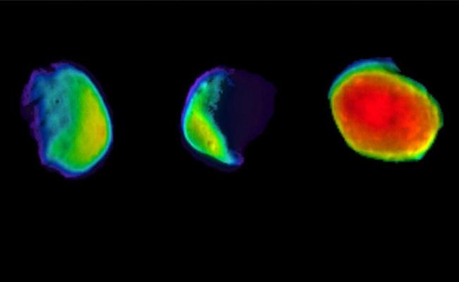Mars'da Dolunay İlk Kez Görüntülendi