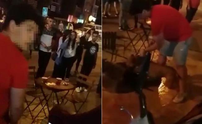Pitbull Sokak Kedisine Saldırdı!