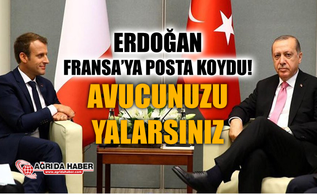 Erdoğan Fransa'ya posta koydu: Avucunuzu yalarsınız