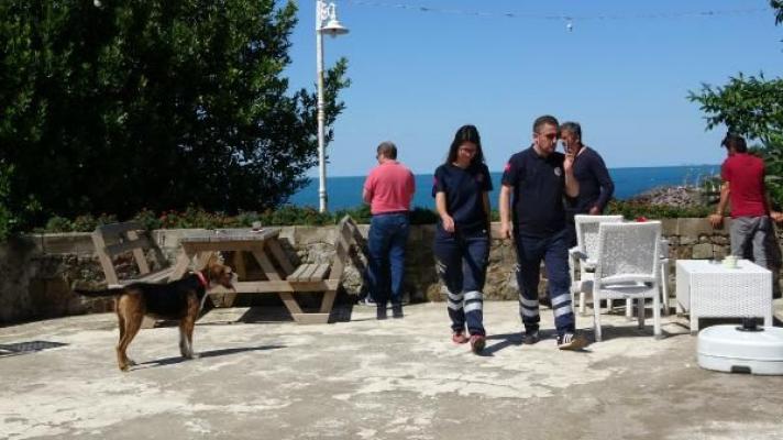 Deniz'de Kaybolan Öğretmen'den Geri Kalan Şey Köpeği oldu!