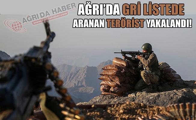 Ağrı'da Gri Kategoride Aranan Terörist Yakalandı!