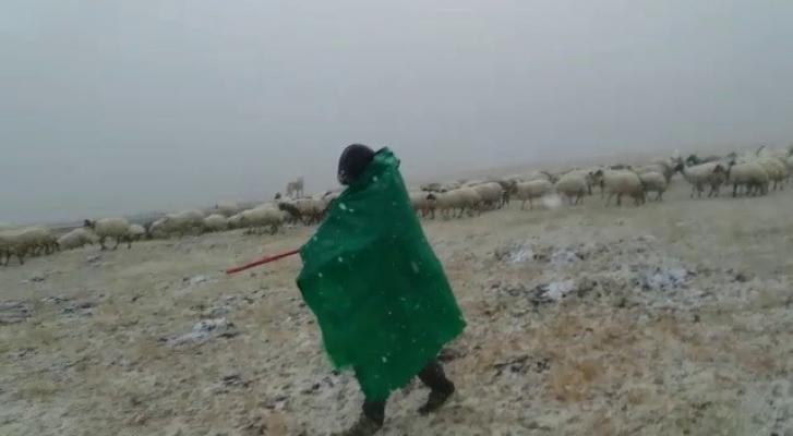 Ağrı Diyadin'de kar yağışı etkili olmaya başladı