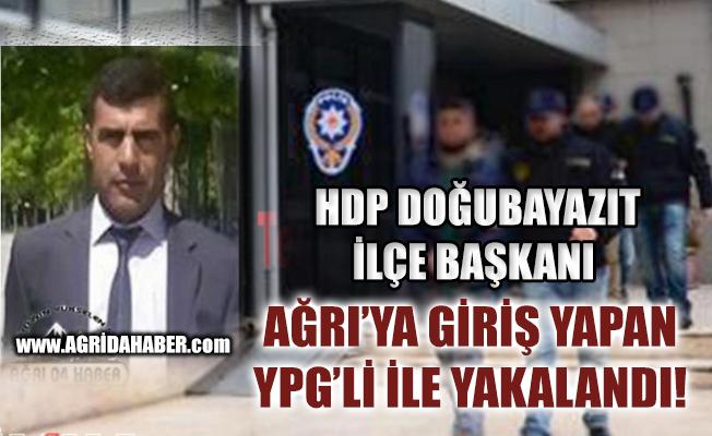 İran'dan Ağrıya Gelen YPG'li, HDP Doğubayazıt ilçe Başkanıyla Yakalandı