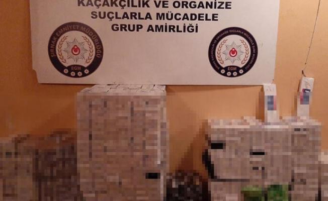 Şırnak'ta Kaçakçılara Büyük Operasyon! 47 Gözaltı