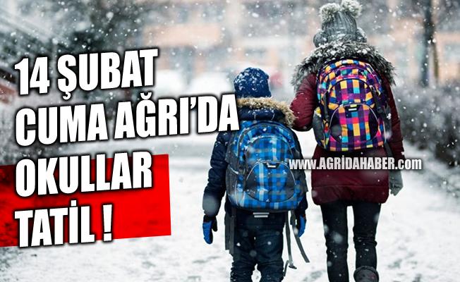Ağrı'da Kar Tatili Uzatıldı 14 Şubat Cuma Okullar Tatil