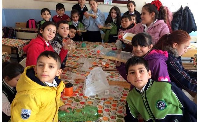 Patnoslu öğrenciler kuşlara yem bıraktı