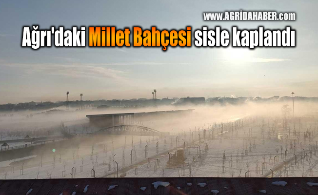 Ağrı'daki Millet Bahçesi sisle kaplandı