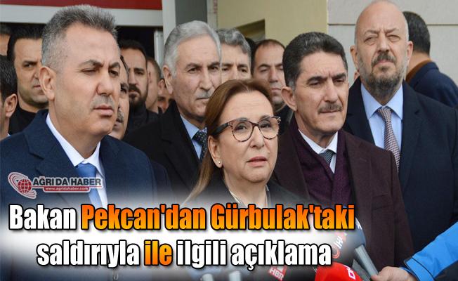 Bakan Pekcan'dan Gürbulak'taki saldırıyla ile ilgili açıklama